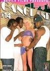 Gangland 14
