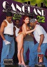 Gangland 22