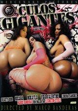 Culos Gigantes 2