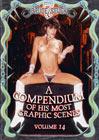 A Compendium Of His Most Graphic Scenes 14