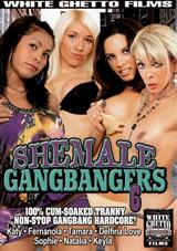 Shemale Gangbangers 6