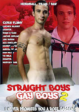 Straight Boys Gay Boys 2
