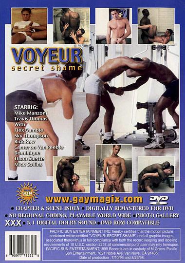 Voyeur Secret Shame Cover Front