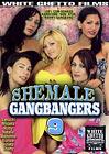 Shemale Gangbangers 9