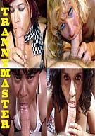 Tranny Master