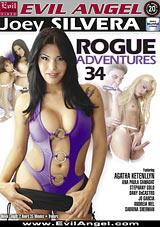Rogue Adventures 34