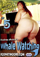 Whale Watching 5