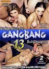 Vollgewichste Gang-Bang Schlampen 13