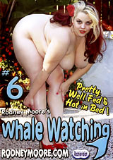Whale Watching 6