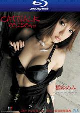 Catwalk Poison 8: Yumemi Tachibana