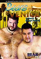 Bears Of Venice