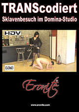 Transcodiert: Sklavenbesuch Im Domina-Studio