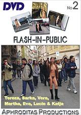 Flash In Public 2