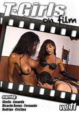 T-Girls On Film 11