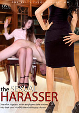 The Sexual Harasser