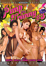 Pimp My Tranny 3