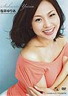 Kamikaze Premium 63: Yuria Sakurai