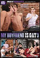 My Boyfriend Is Gay 3