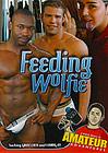 Feeding Wolfie