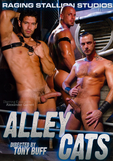Alley Cats Cover Front