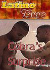 Cobra's Surprise