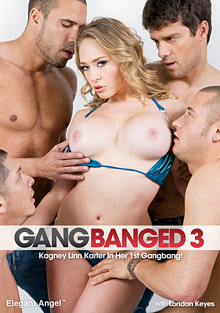 Gang Banged 3 adult gallery