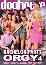 Bachelor Party Orgy 4