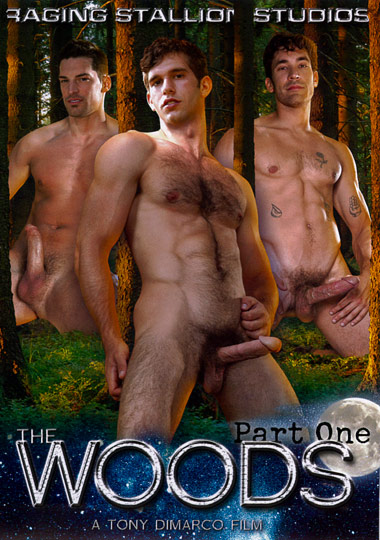 The Woods 1 Cena 3 Cover 1