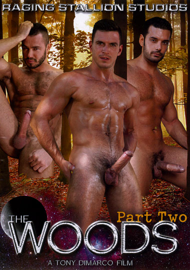 The Woods 2 Cover Front