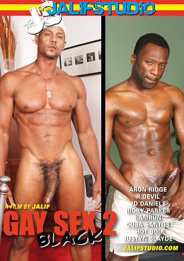 Gay Sex 2 Black Cover Front