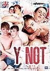Brit Ladz: Y Not