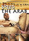 Breed The Arab