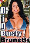 Big Busty Brunetts