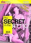 The Secret In The Attic