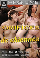Orifices De Chiennes