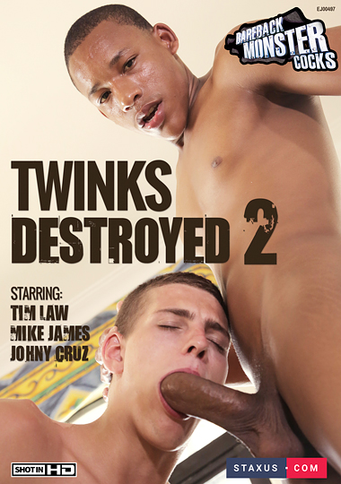 Twinks Destroyed 2 Cover Front
