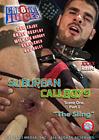 Suburban Callboys: The Sling