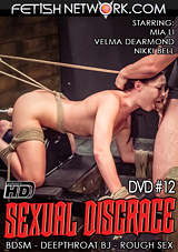 Sexual Disgrace 12