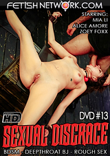 Sexual Disgrace 13