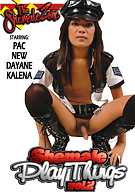 Shemale Playthings 2