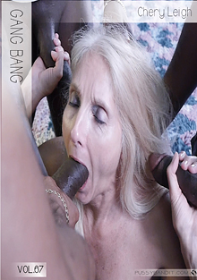 Puzzy Bandit 67: Gang Bang Chery Leigh cover