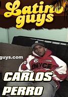 Carlos Perro