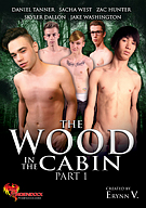 The Wood In The Cabin