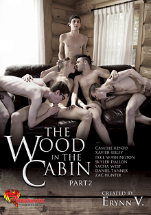 The Wood In The Cabin 2 cover