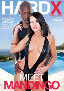 Meet Mandingo cover