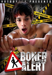 Boner Alert cover