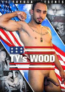 TY's Wood cover