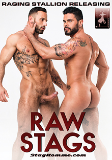 Raw Stags cover