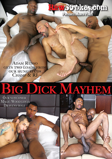 Big Dick Mayhem cover