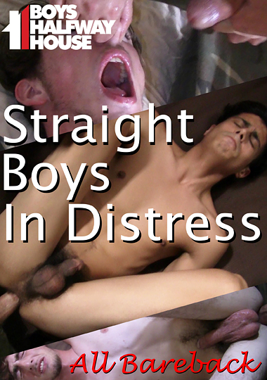 Straight Boys In Distress cover
